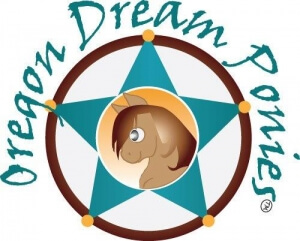 final-Dream-Ponies-logo