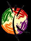 AE_Transparent_Logo